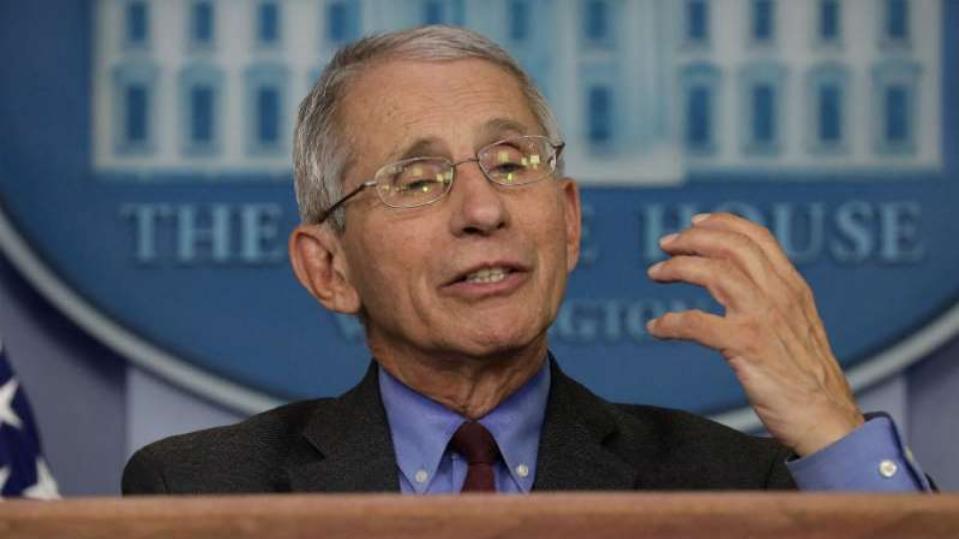 共和党议员:福西可能弊大于利